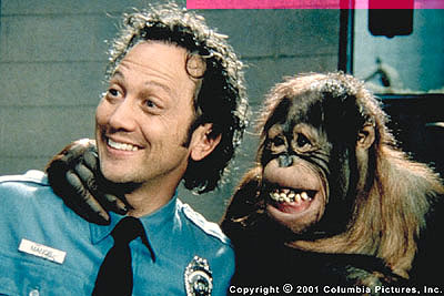 http://thephoenix.com/BLOGS/blogs/outsidetheframe/rob_schneider_the_animal_001.jpg