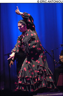 1111_flamenco_main