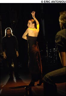 090220_flamenco_main