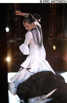 main_flamenco_220