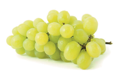 FOOD_LIQUID_grapes