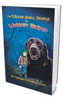 Sidebar_WhiskeyBridgeBook