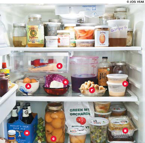 foodfridge_MAIN_480