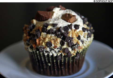 main2_chocchips_cupcake480