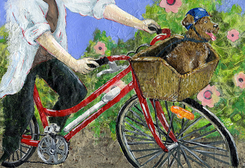 Bike-bible-2010-Gosselin