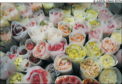 1002_flowers_main