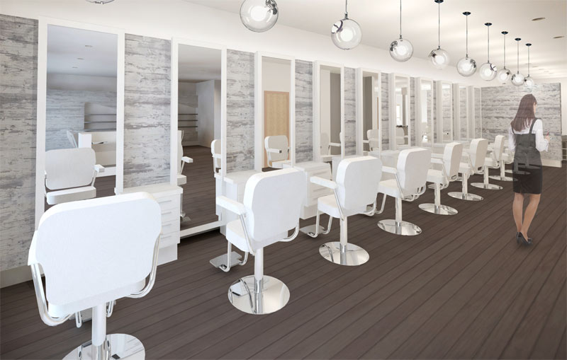 rendering_salon