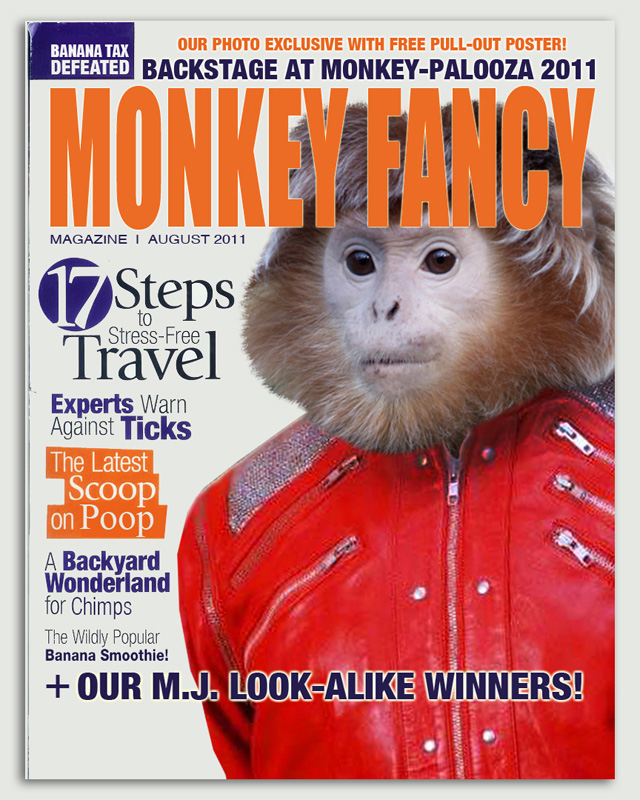 MonkeyFancy_main