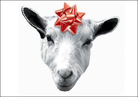 071207_goat_main