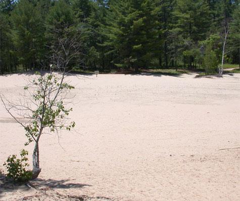 desert475.jpg