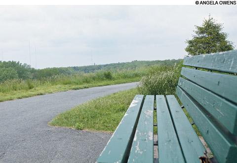 Millenium Park for picnics in Boston