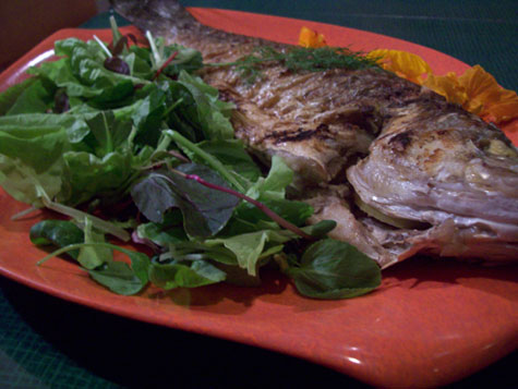 fish main