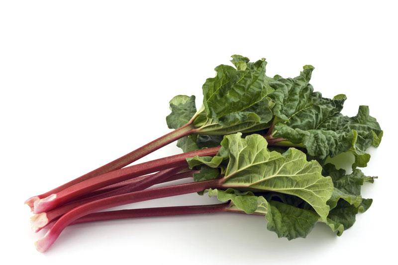main2_rhubarb_800