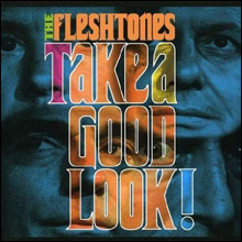 inside_THE-FLESHTONES---HAV