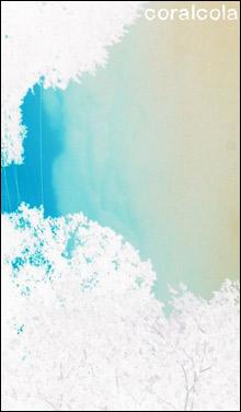 080606_coral_main