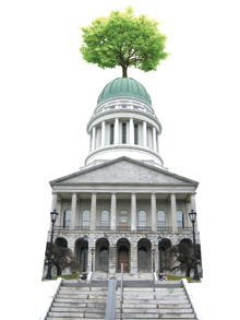 StateHousewTree_main