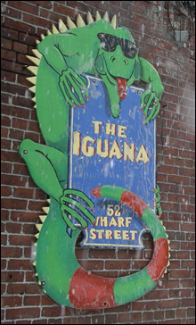 SIGN OF THE TIMES Iguana's look is on the way out.