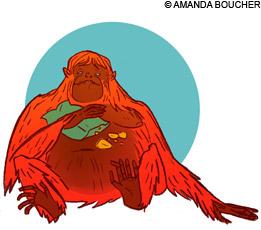 monkeynews_fatfood220