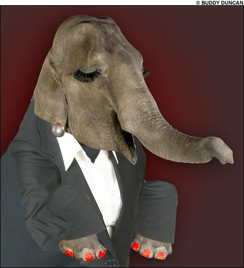 090605_elephant_main