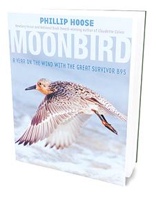TJI_MoonbirdBook_main