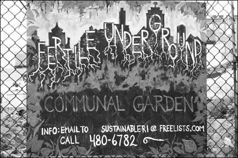 fertile-underground-image_m
