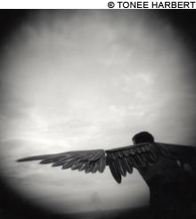tji_portes_Icarus_main